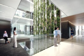 Malaysia's First Vertical Green Wall at Office Space | Plaza Hap Seng